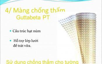 Màng chống thấm Gutta PT ( Chống thấm tường )