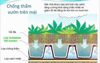 Màng trồng cây trên mái sân thượng